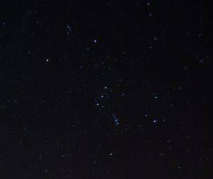 img_5864-orione